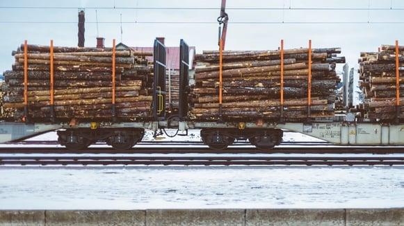 Canadian wood logs