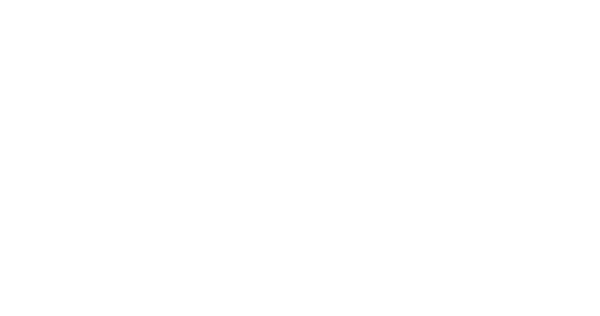 An example of a machine learning workflow, from data, to modelling, to prediction